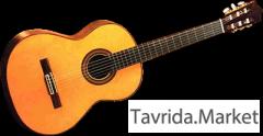 Обучу игре на гитаре