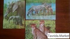 Советские открытки, 60-х, разные