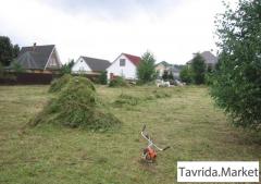Покос травы, уборка территории от мусора